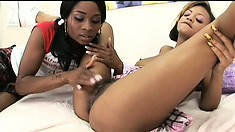 Busty ebony coeds lick a lot of chocolaty pussy in the dorm room