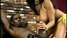 Busty ebony goddess Candace has her hands giving a black cock a special treatment