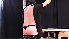 Charming pliant guy allows himself to be involved in BDSM game