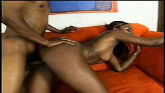 Dazzling caramel babe with a splendid booty and big tits is addicted to black cock